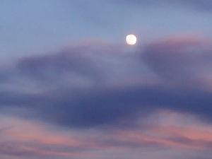 Luna de tarde