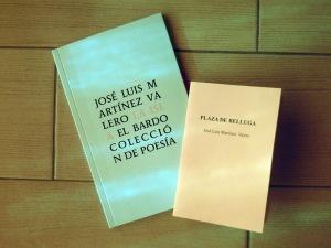 Libros de José Luis Martínez Valero