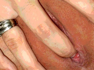Indigesta'